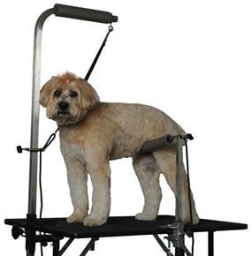 Amazing Groomeru0027s Helper Pro Set With Dog